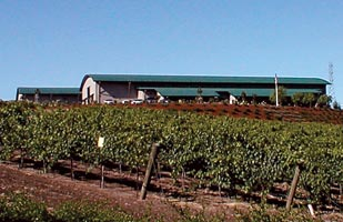 Baileyana Winery 04